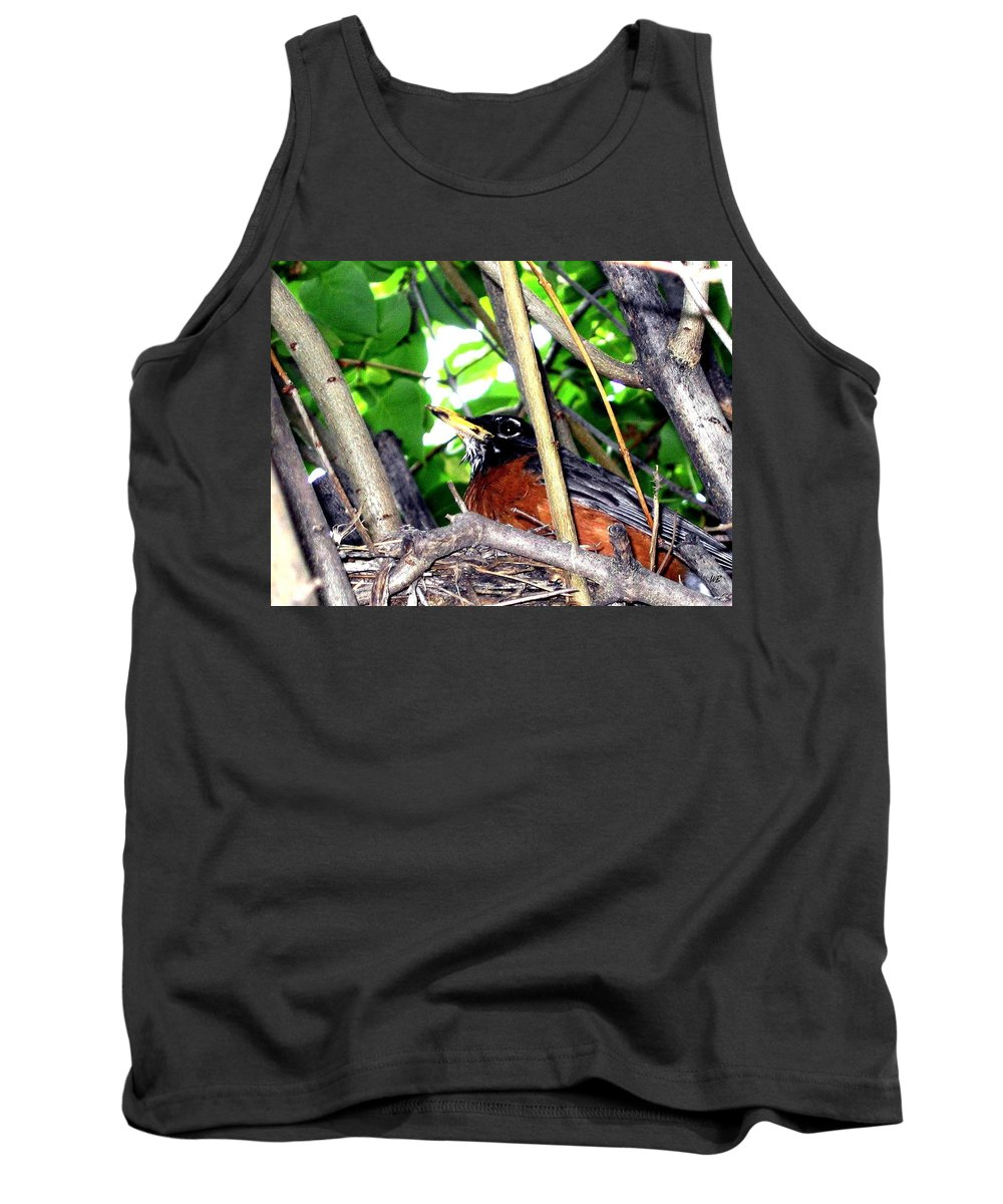 Robin Tank Top featuring the photograph Nesting Robin by Will Borden