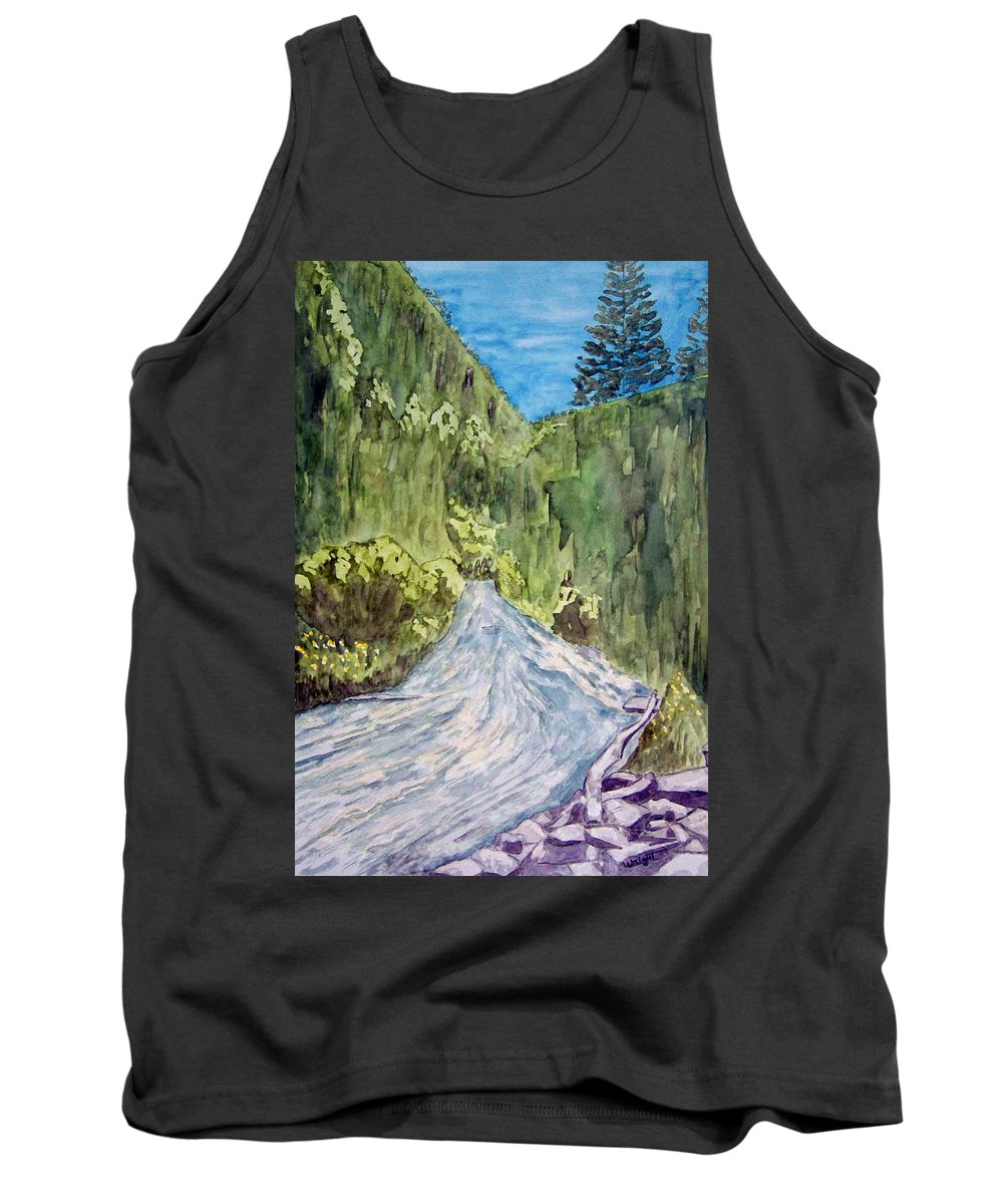New Mexico Art Tank Top featuring the painting New Mexico Canyon Impression by Larry Wright