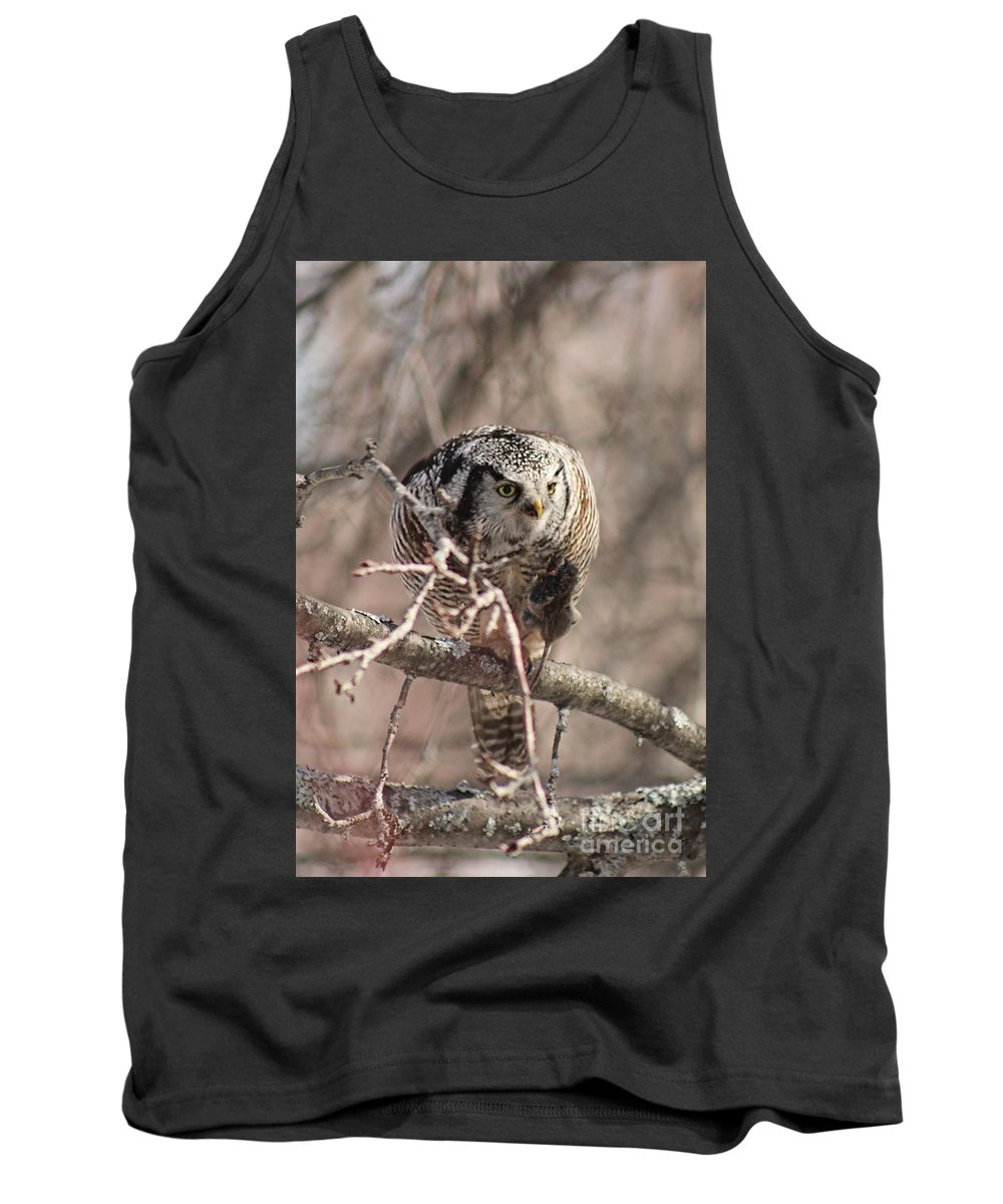 Northern Hawk Owl Tank Top featuring the photograph Northern Hawk Owl Having Lunch 9450 by Joseph Marquis