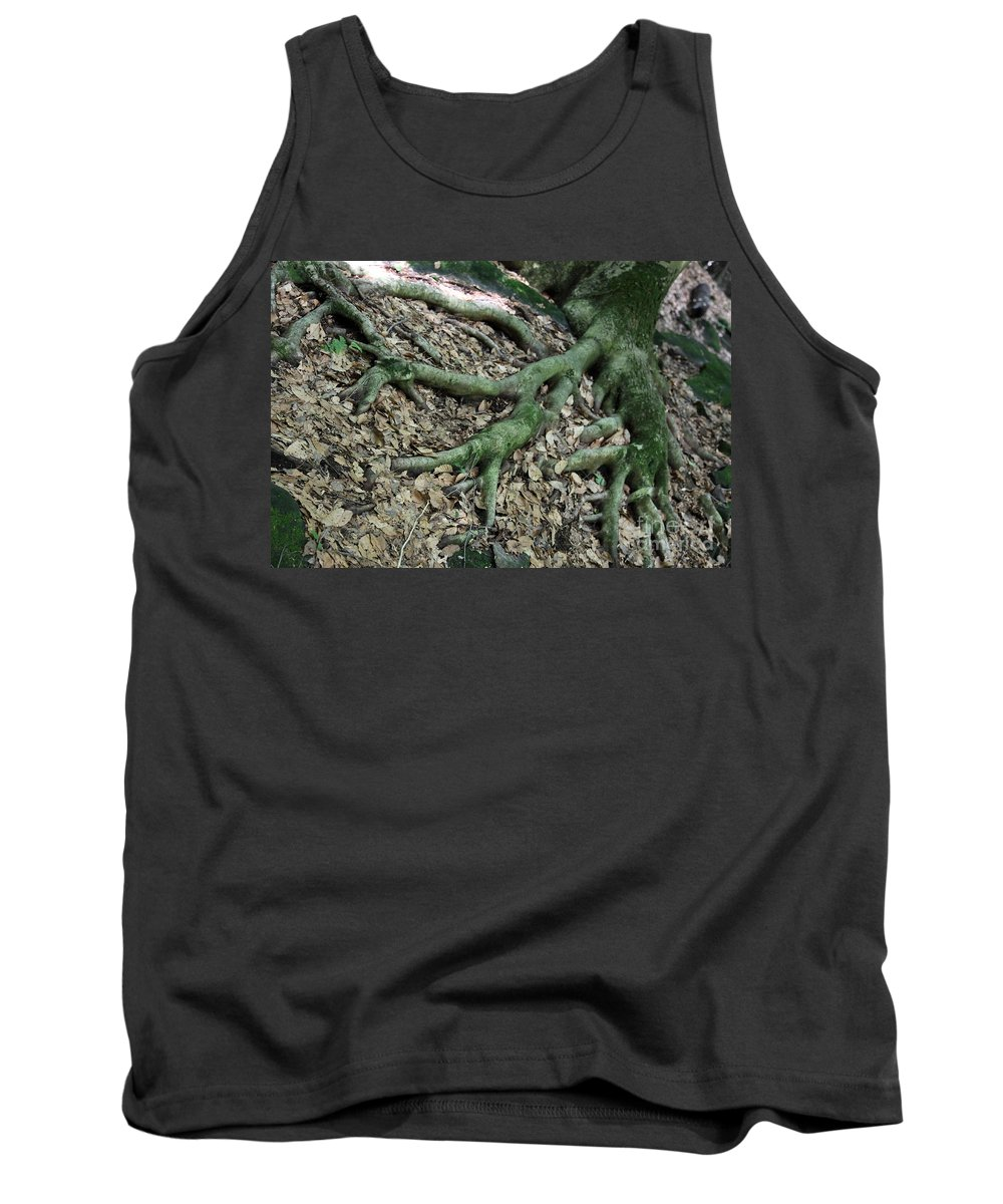 Trees Tank Top featuring the photograph Nourishment by Amanda Barcon