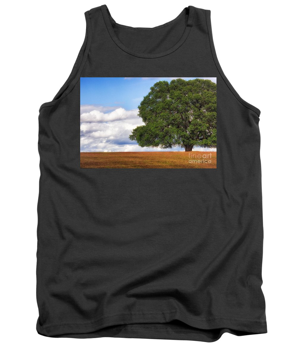 Oak Tank Top featuring the photograph Oaktree by Anthony Bonafede