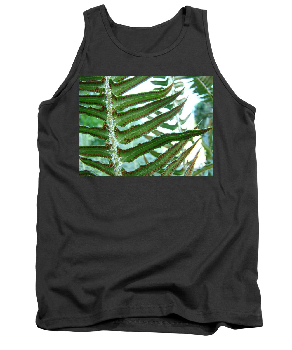 Fern Tank Top featuring the photograph Office Art Ferns Green Forest Fern Giclee Prints Baslee Troutman by Baslee Troutman