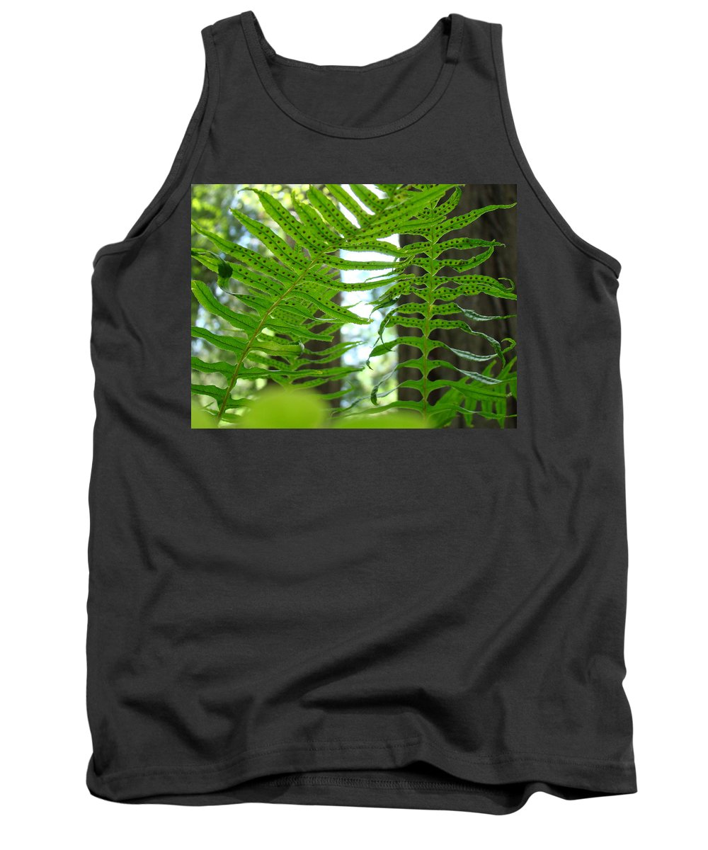 Fern Tank Top featuring the photograph Office Art Ferns Redwood Forest Fern Giclee Prints Baslee Troutman by Baslee Troutman