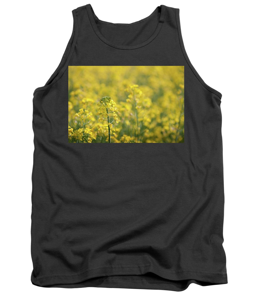 Countryside Tank Top featuring the photograph Oilseed Rape by Linda Cooke