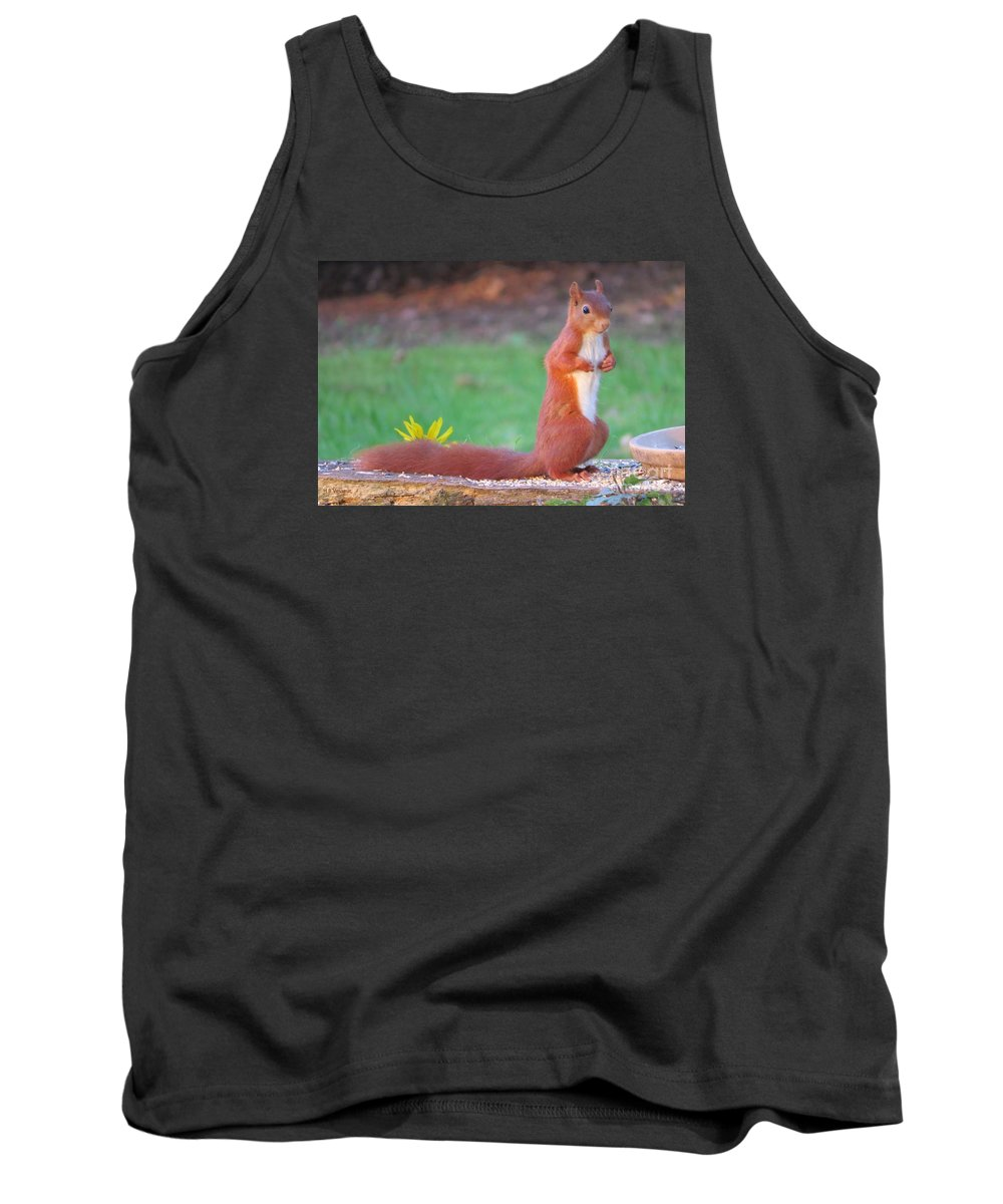 Nature Tank Top featuring the photograph Ok I'll Stay by B Vesseur