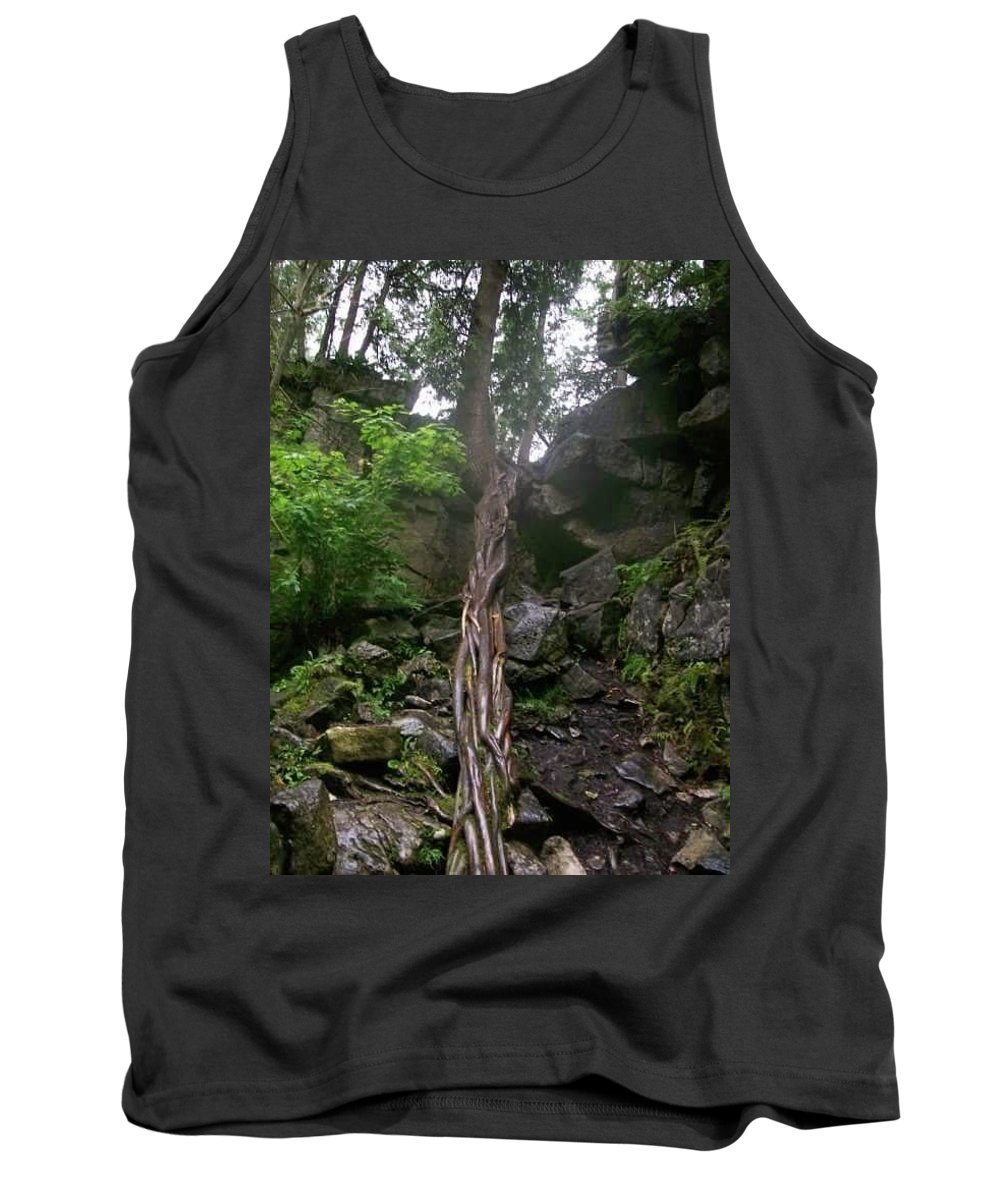 Tree Roots Tank Top featuring the photograph Old Tree by Paul Fisher