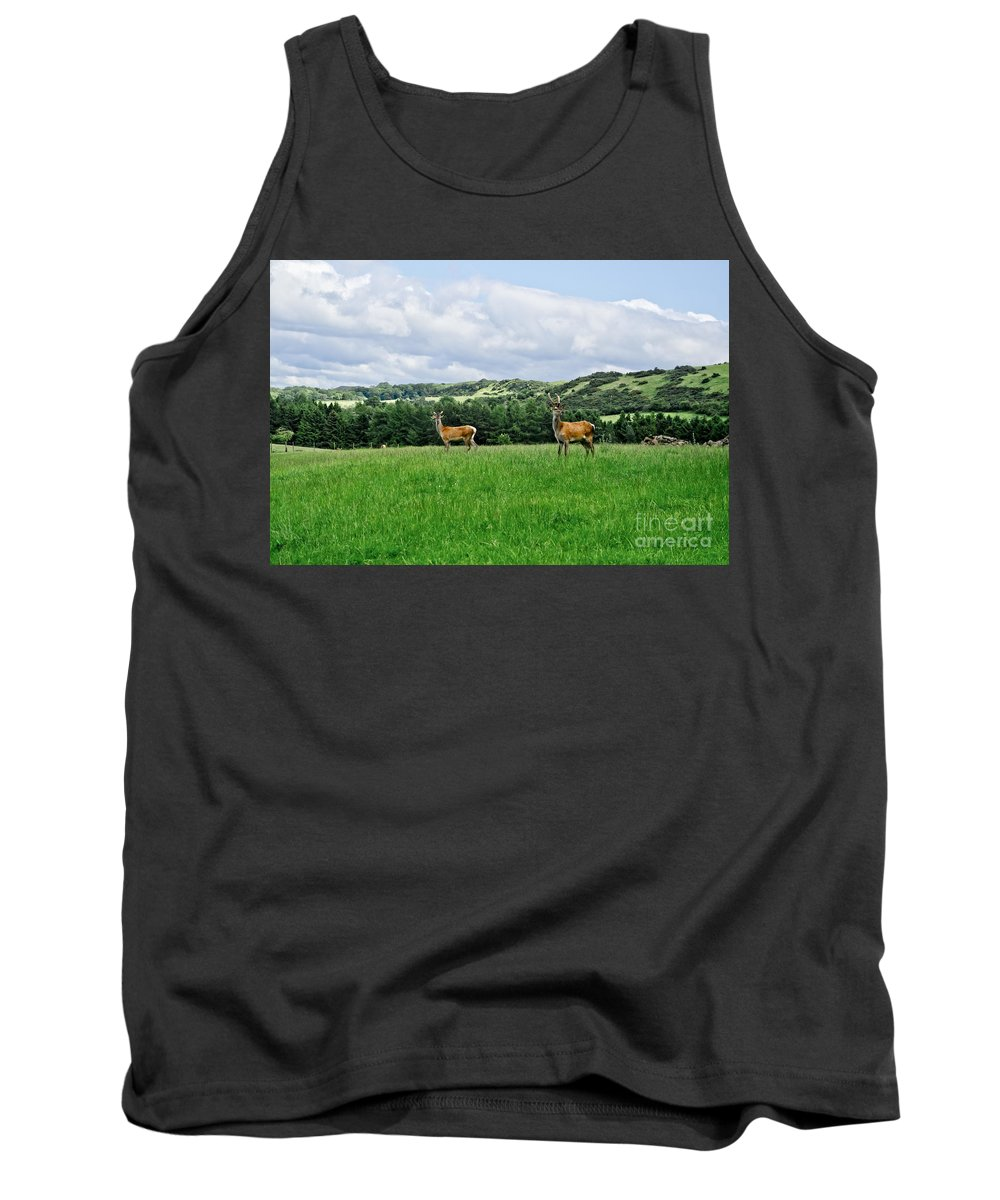 Beecraigs Tank Top featuring the photograph On The Alert. by Elena Perelman