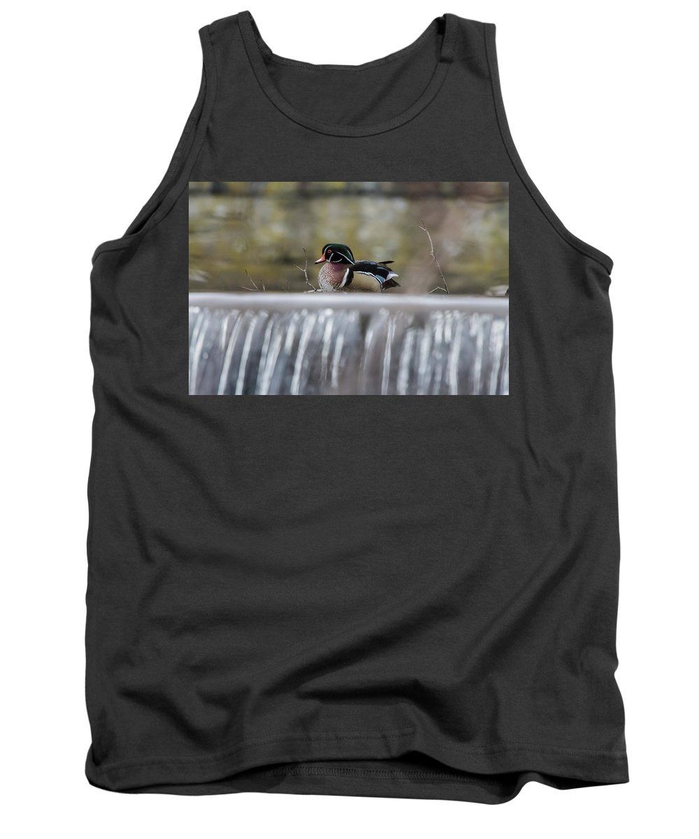 Wildlife Tank Top featuring the photograph On The Edge by Barbara Blanchard