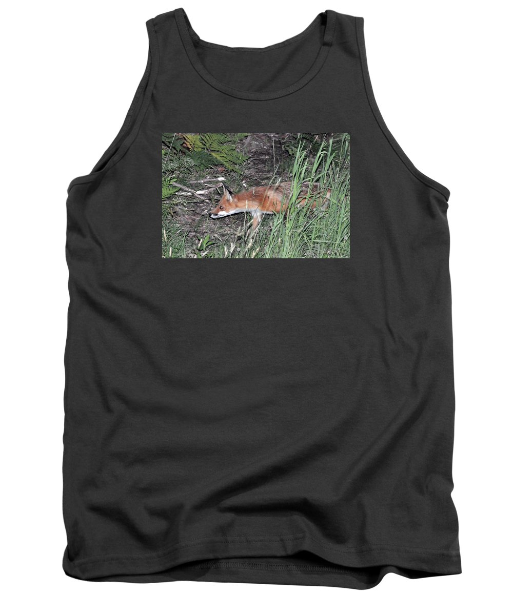 Animal Tank Top featuring the photograph On The Prowl by Glenn Gordon