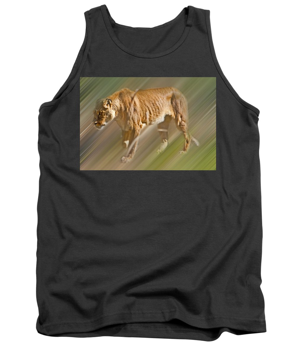 Lioness Tank Top featuring the photograph On The Prowl by Miroslava Jurcik