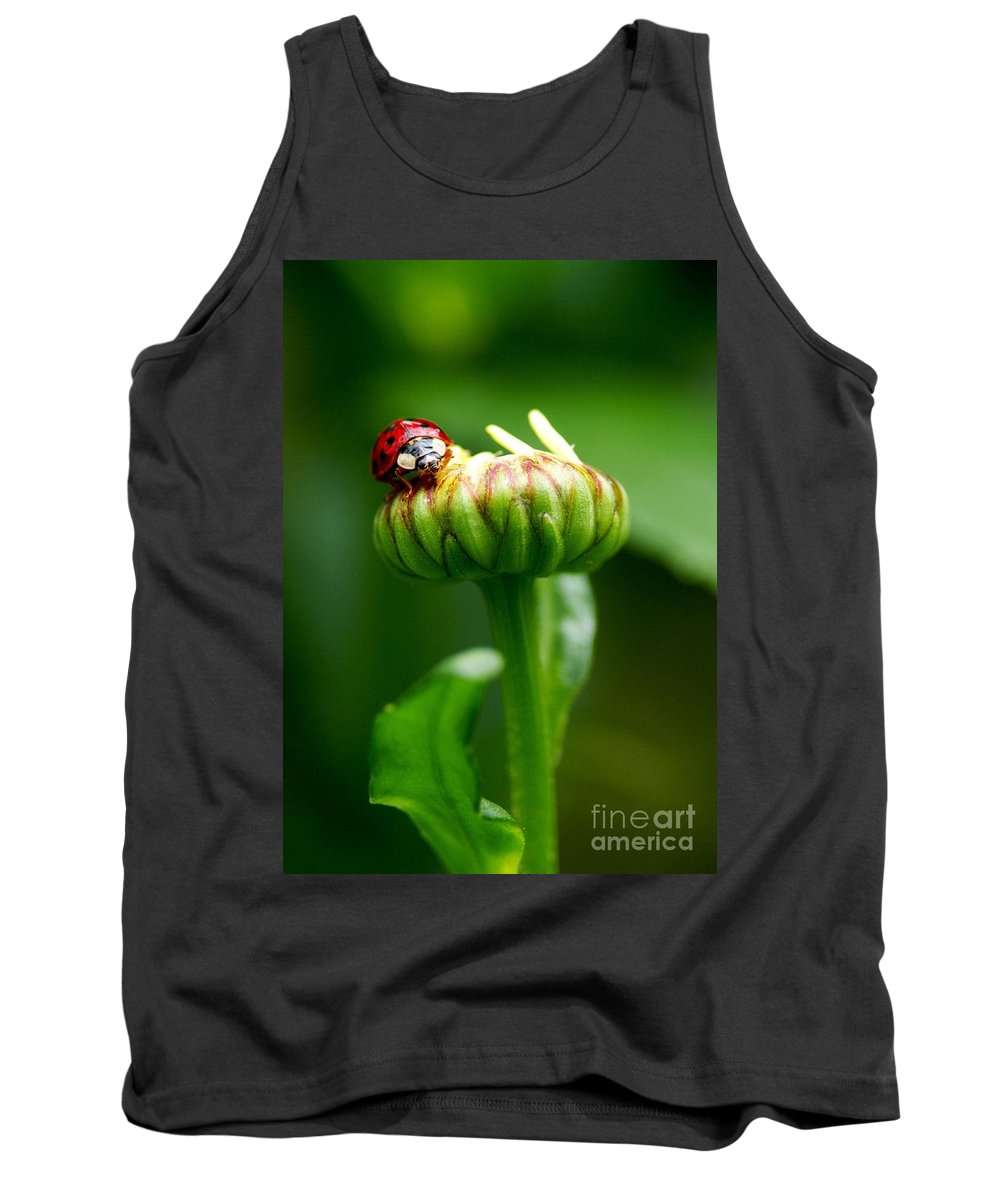 Ladybug Tank Top featuring the photograph On Top Of My World by Sharon Talson