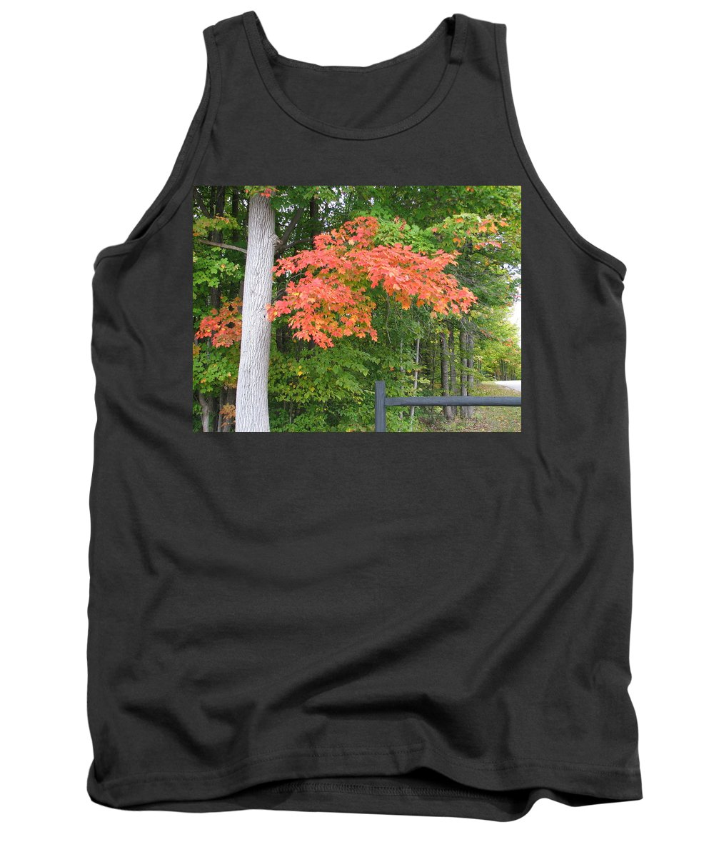 Fall Tank Top featuring the photograph Onaway by Kelly Mezzapelle