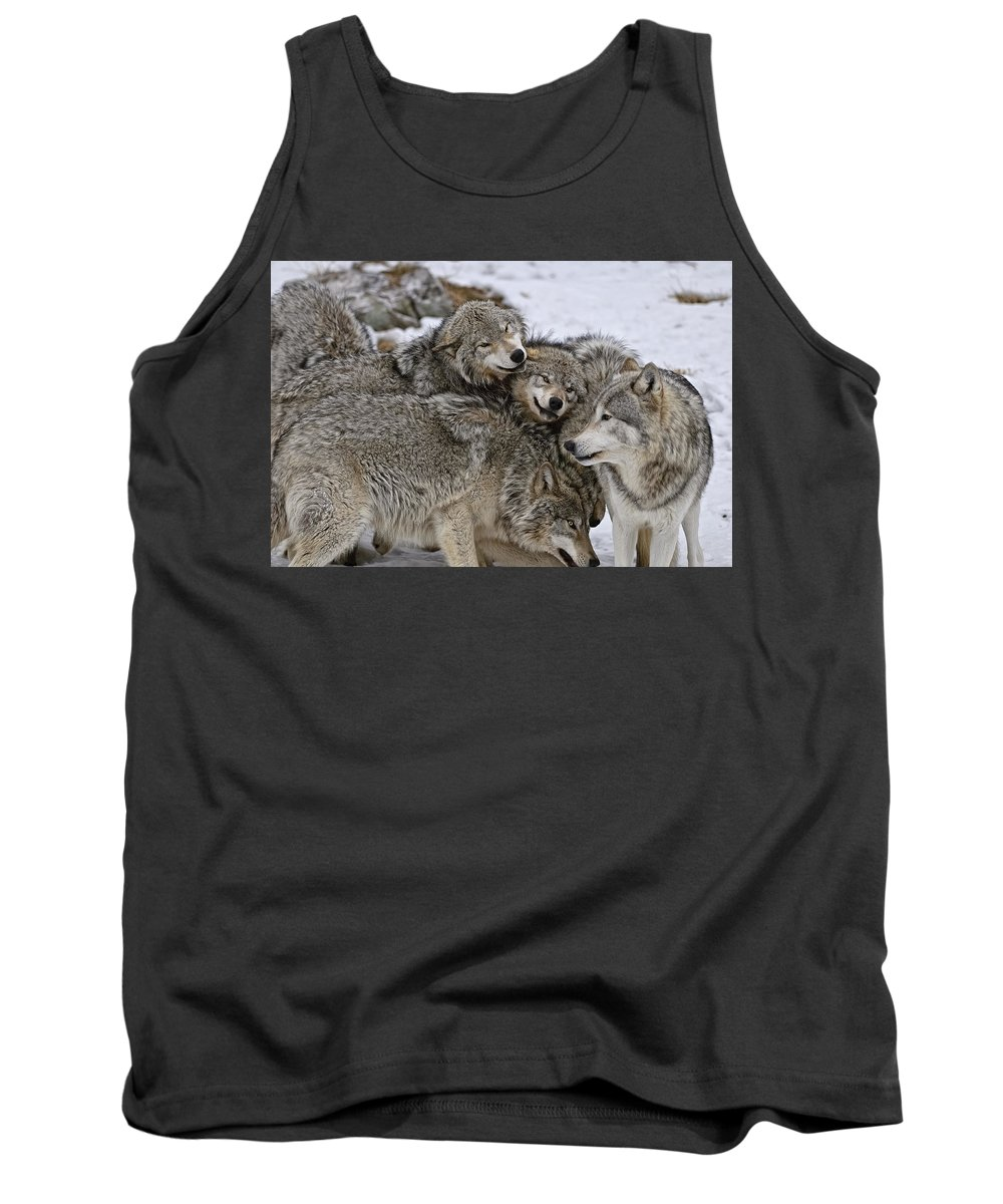 Michael Cummings Tank Top featuring the photograph One Big Happy Family by Michael Cummings