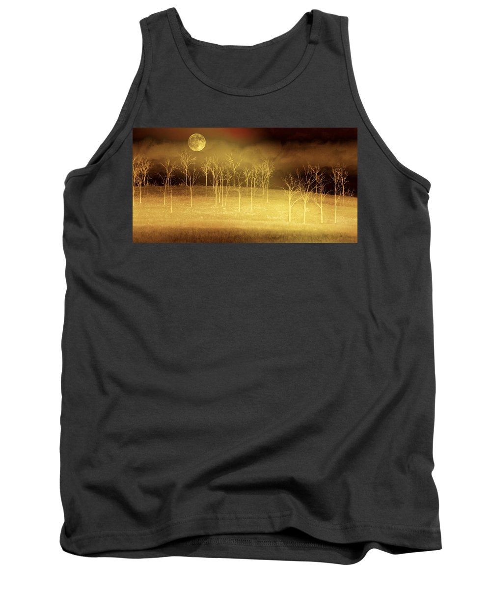 Landscapes Tank Top featuring the photograph Only At Night by Holly Kempe