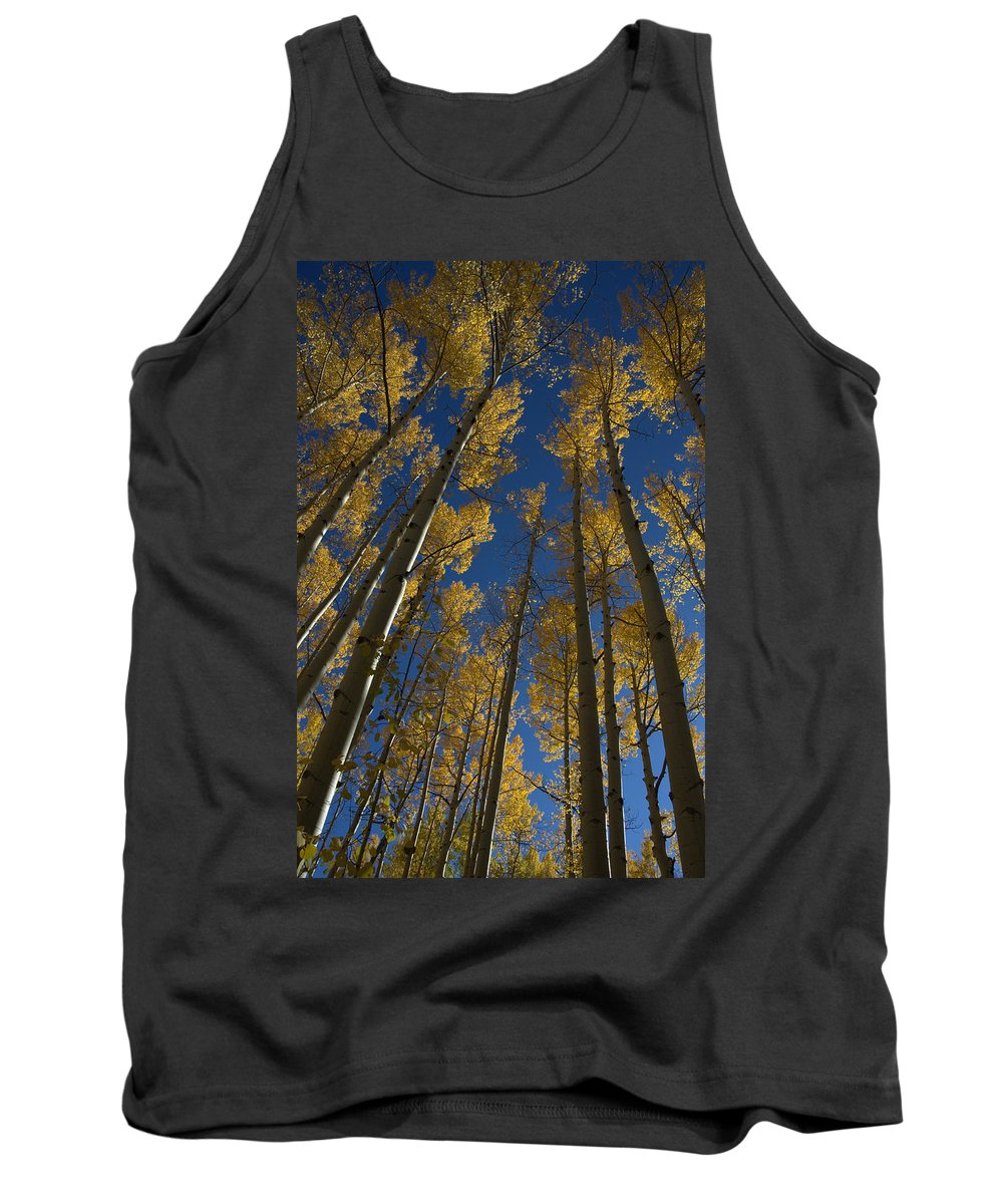 Fall Tank Top featuring the photograph Onward Toward The Sky by Jerry McElroy
