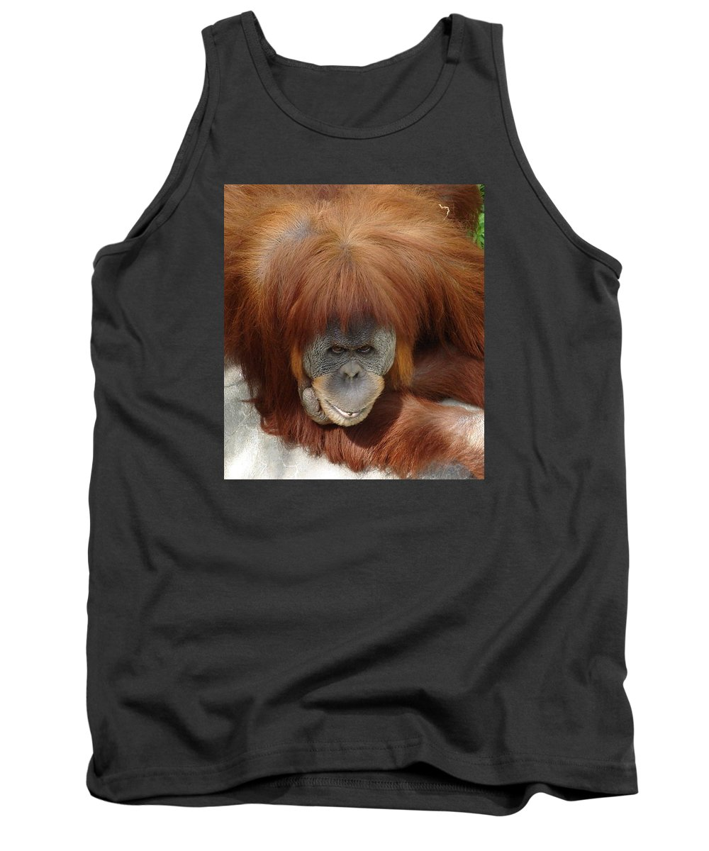Red Ape Eyes Tank Top featuring the photograph Orangutan by Luciana Seymour