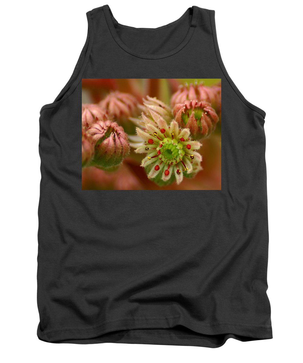 Nature Tank Top featuring the photograph Ornamental Flower by Ben Upham III