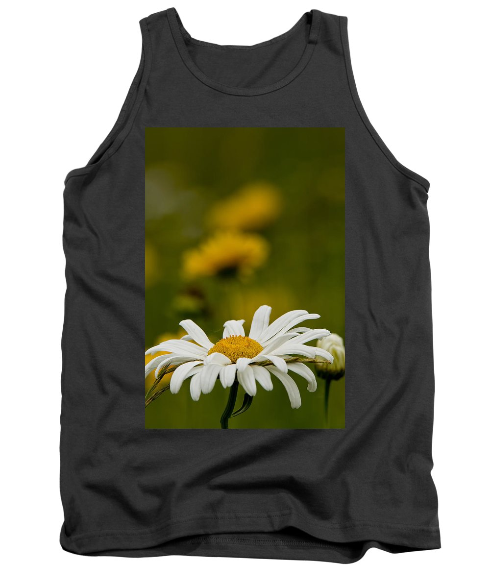 Ox Eyed Daisy Tank Top featuring the photograph Ox Eyed Daisy by Michael Cummings