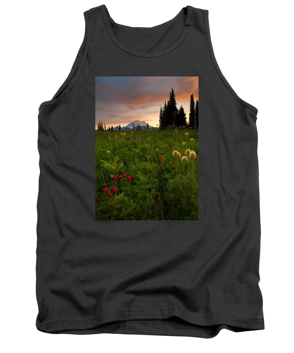Sunset Tank Top featuring the photograph Paintbrush Sunset by Mike Dawson