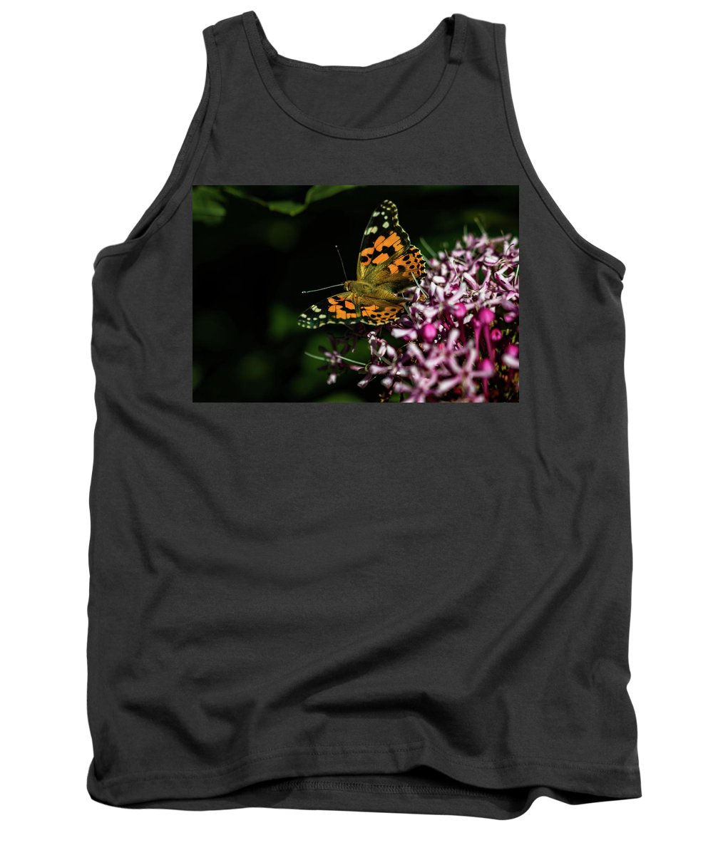 Jay Stockhaus Tank Top featuring the photograph Painted Lady by Jay Stockhaus