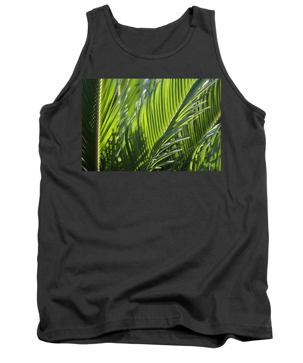 Palm Tank Top featuring the photograph Palm Leaf by Phil Crean