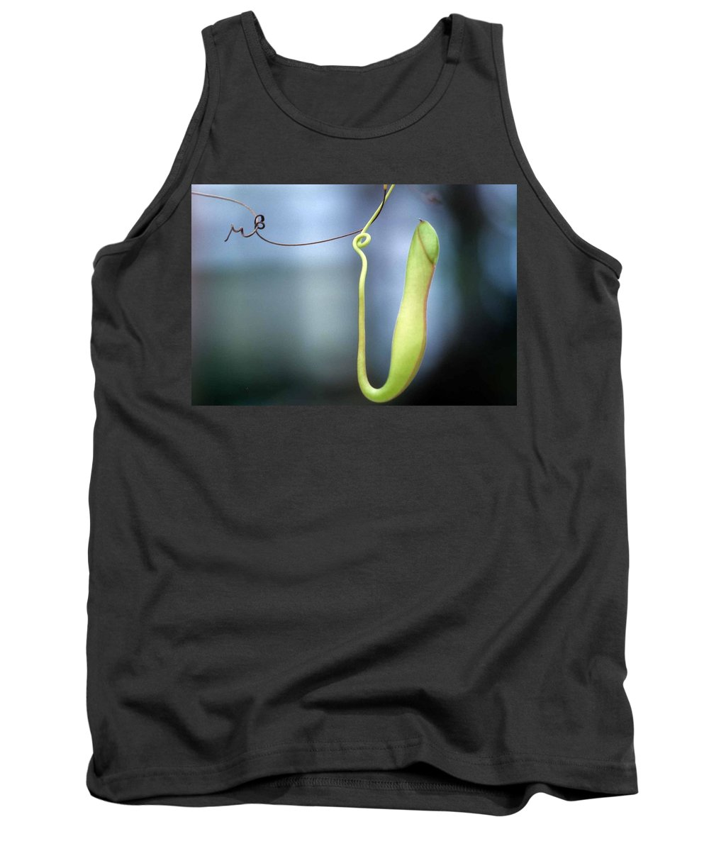 Pan's Green Flute Tank Top featuring the photograph Pan's Green Flute by Laurie Paci
