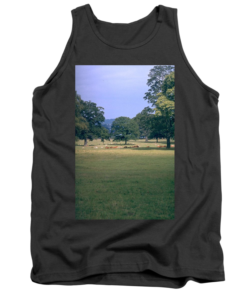 Great Britain Tank Top featuring the photograph Pasture by Flavia Westerwelle