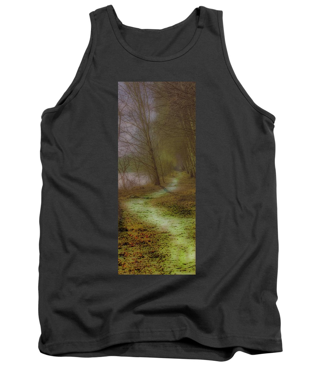 Path Tank Top featuring the photograph Path February 2017 by Leif Sohlman