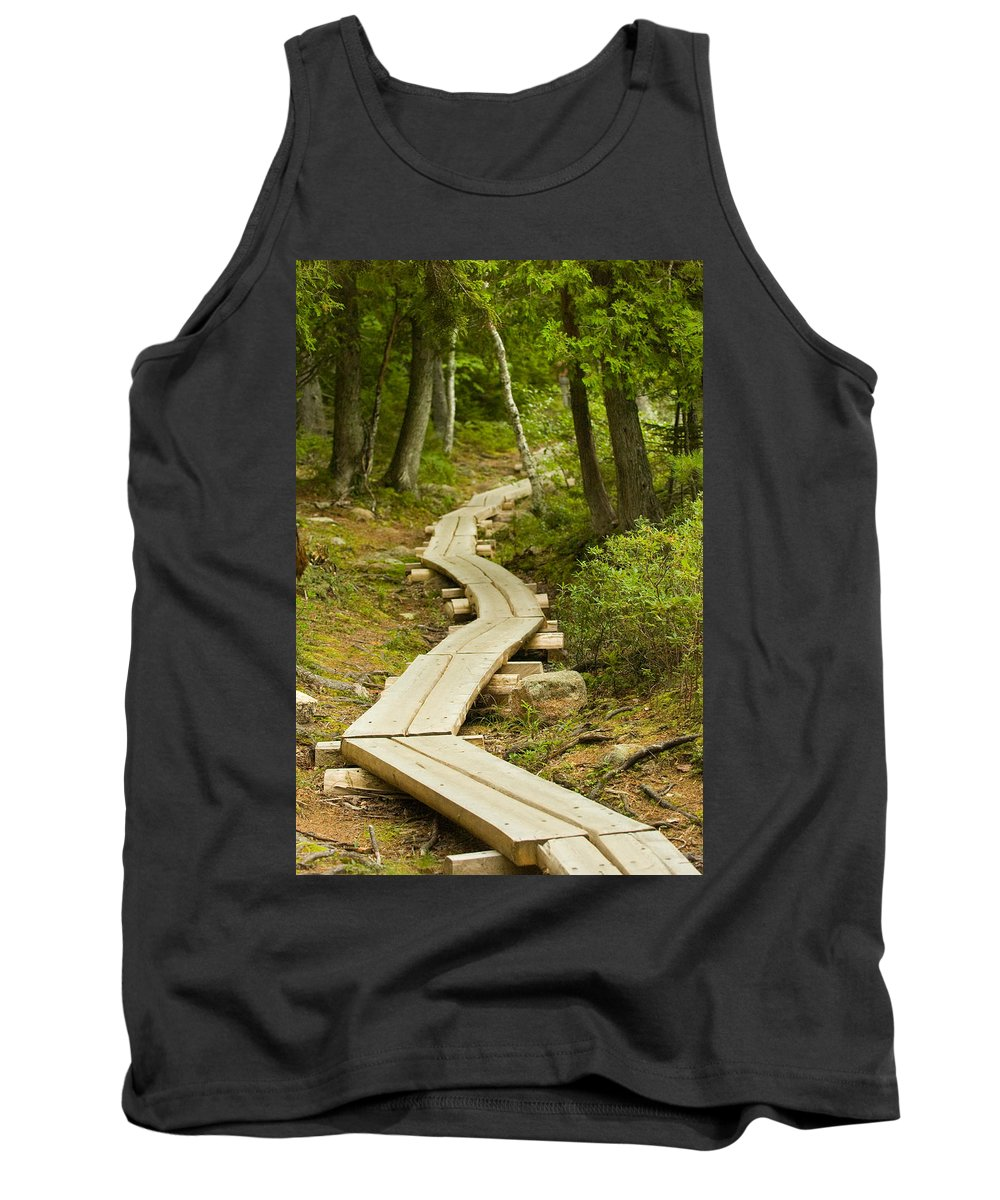 Forest Tank Top featuring the photograph Path Into Unknown by Sebastian Musial