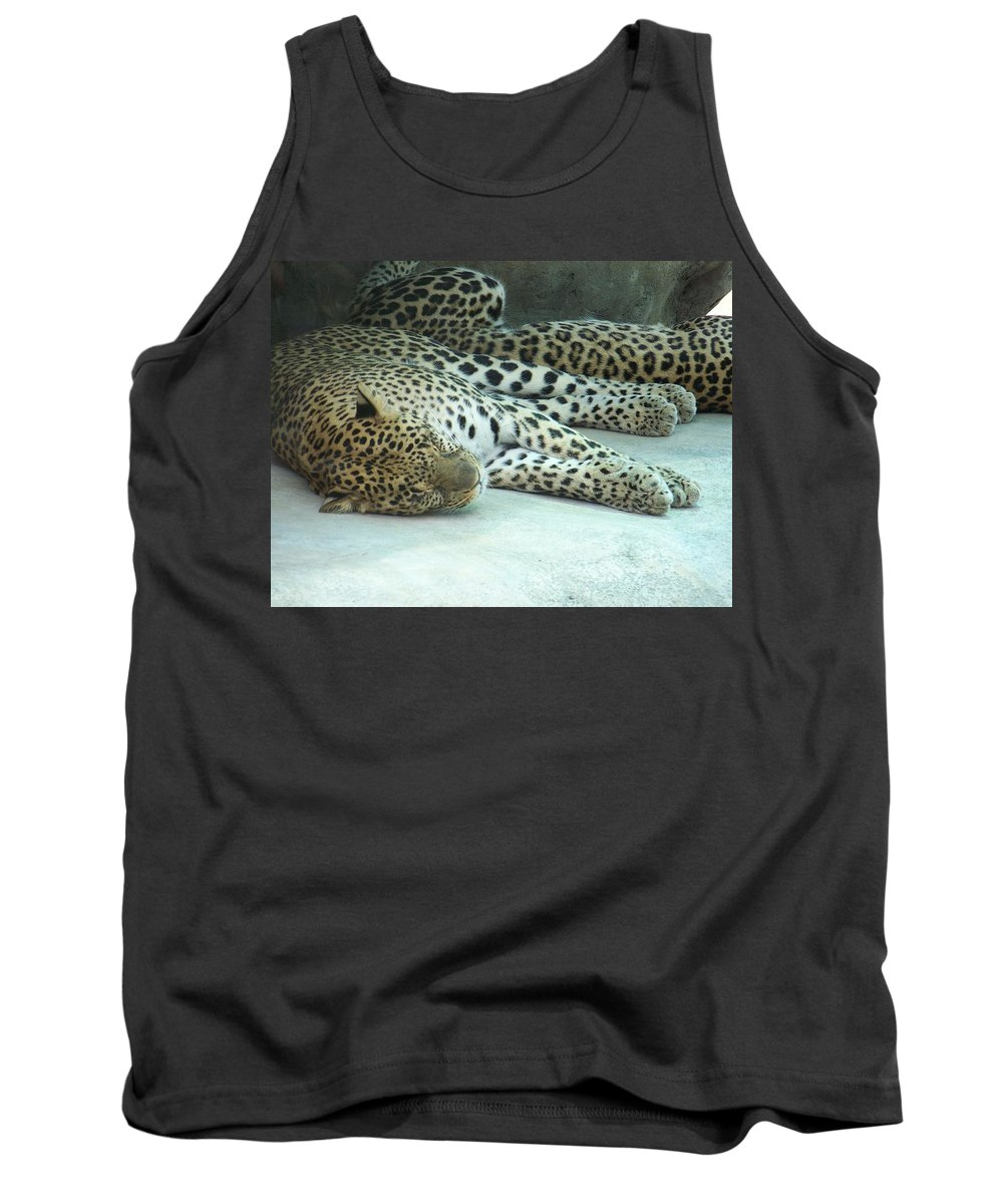 Chetah Tank Top featuring the photograph Peaceful Sleep by Laurie Paci