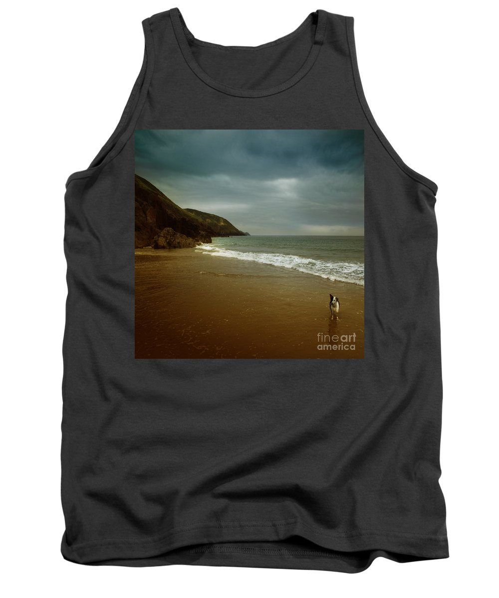 Beach Tank Top featuring the photograph Pembrokeshire by Angel Ciesniarska