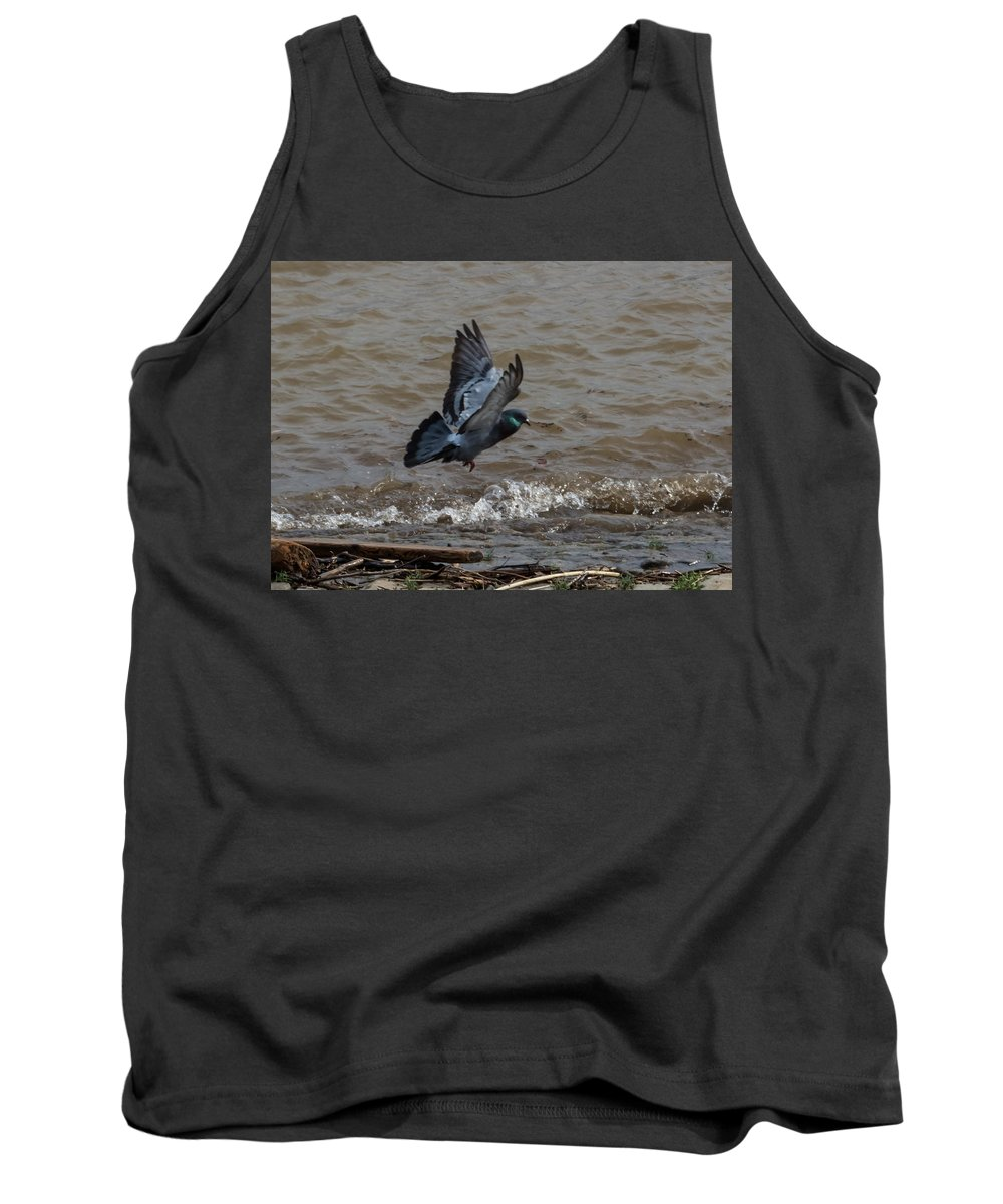 Jan Holden Tank Top featuring the photograph Pigeon Getting Ready To Land by Jan M Holden