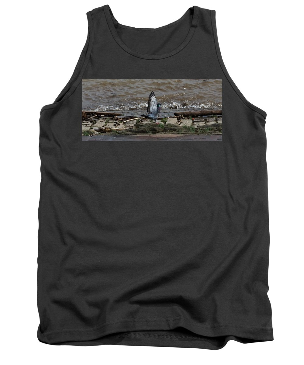 Jan Holden Tank Top featuring the photograph Pigeon With Its Wings Up by Jan M Holden