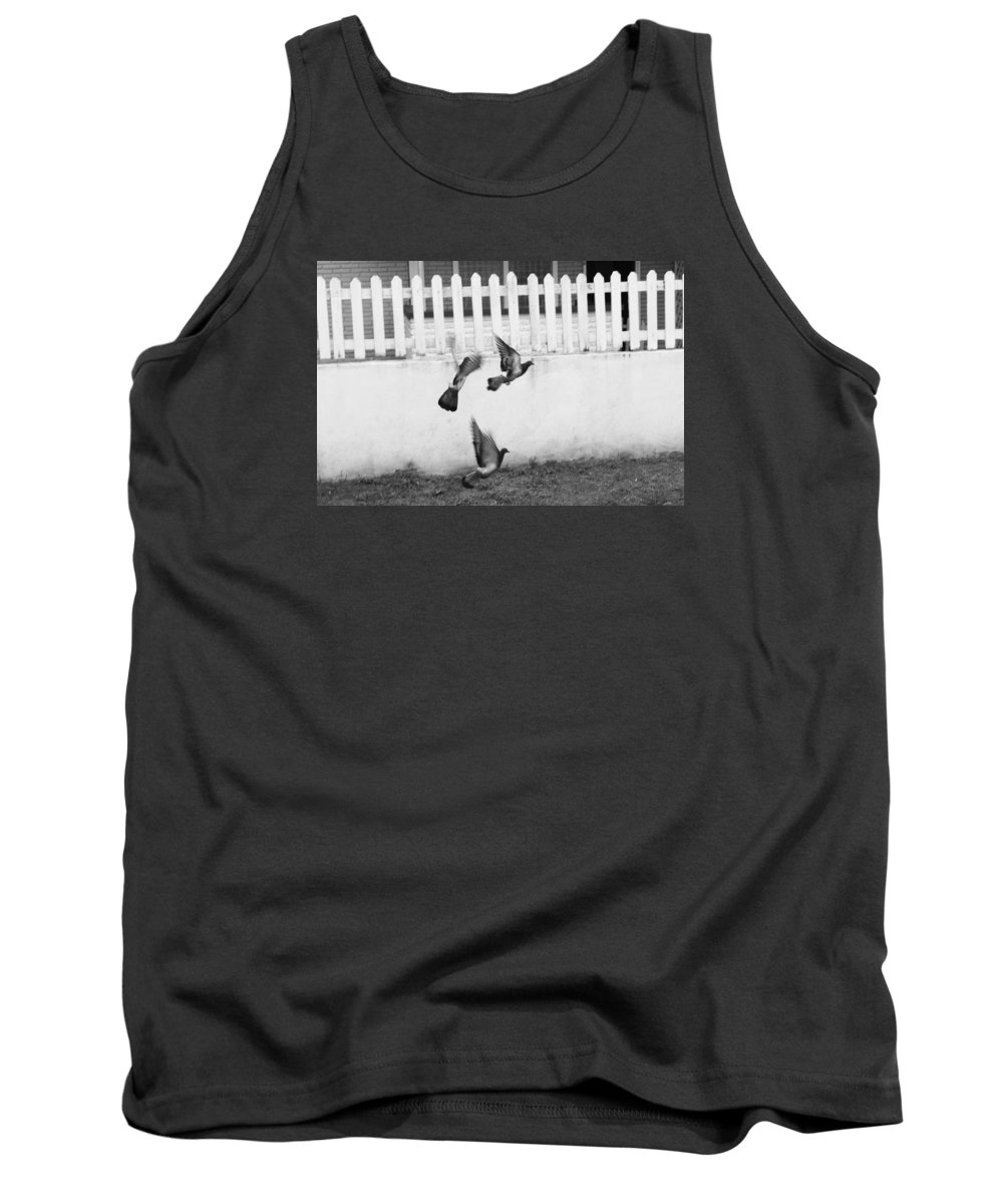 Tank Top featuring the photograph Pigeons by Brian Gomes