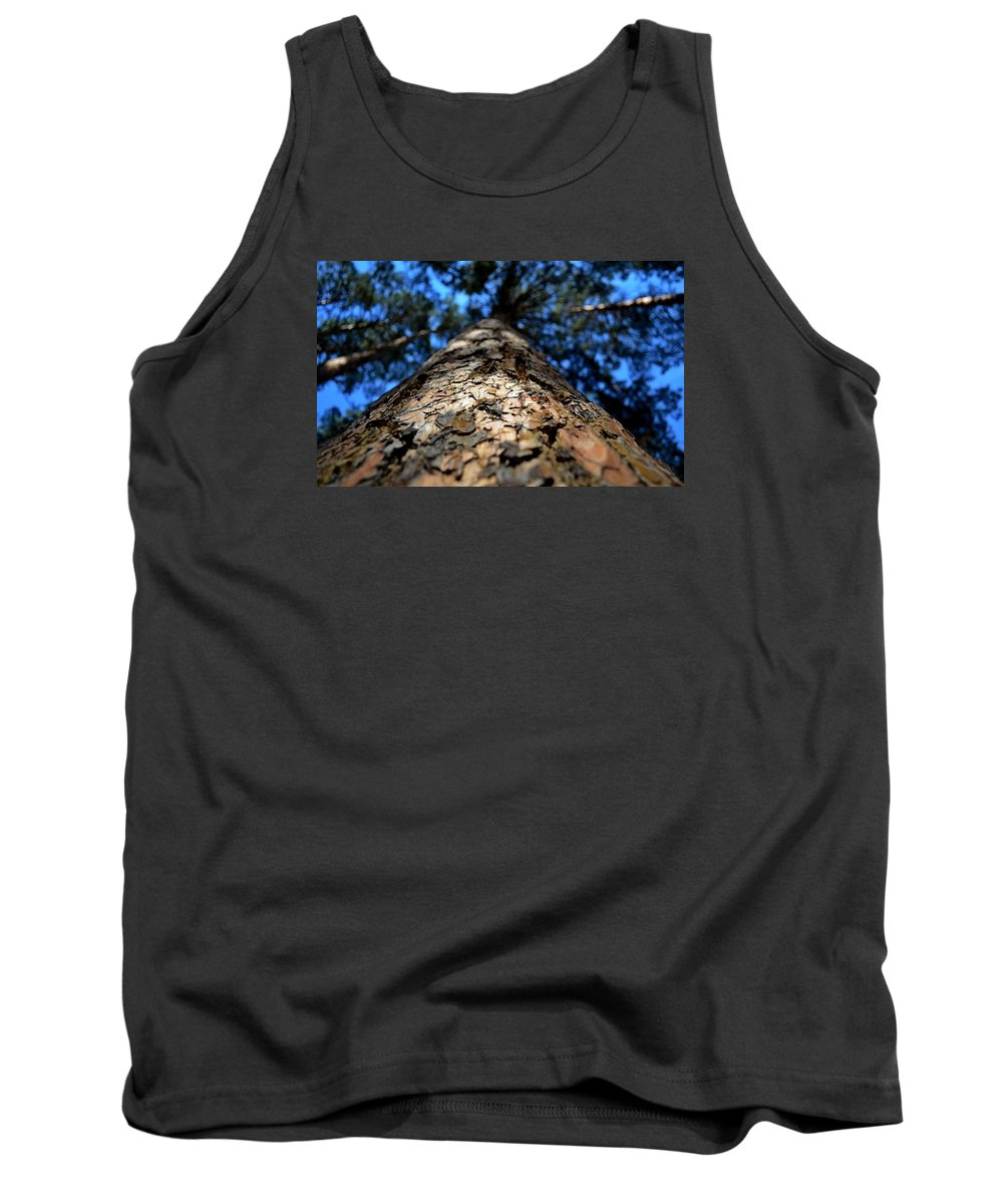 Pine Bark Tank Top featuring the photograph Pine by Alexey Kezin