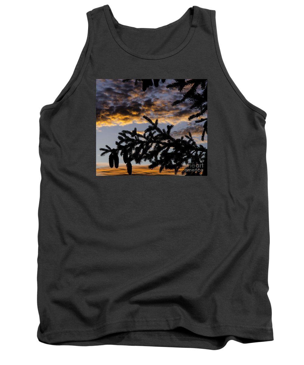 Pine Tank Top featuring the photograph Pine Cone Sunset by Nick Boren