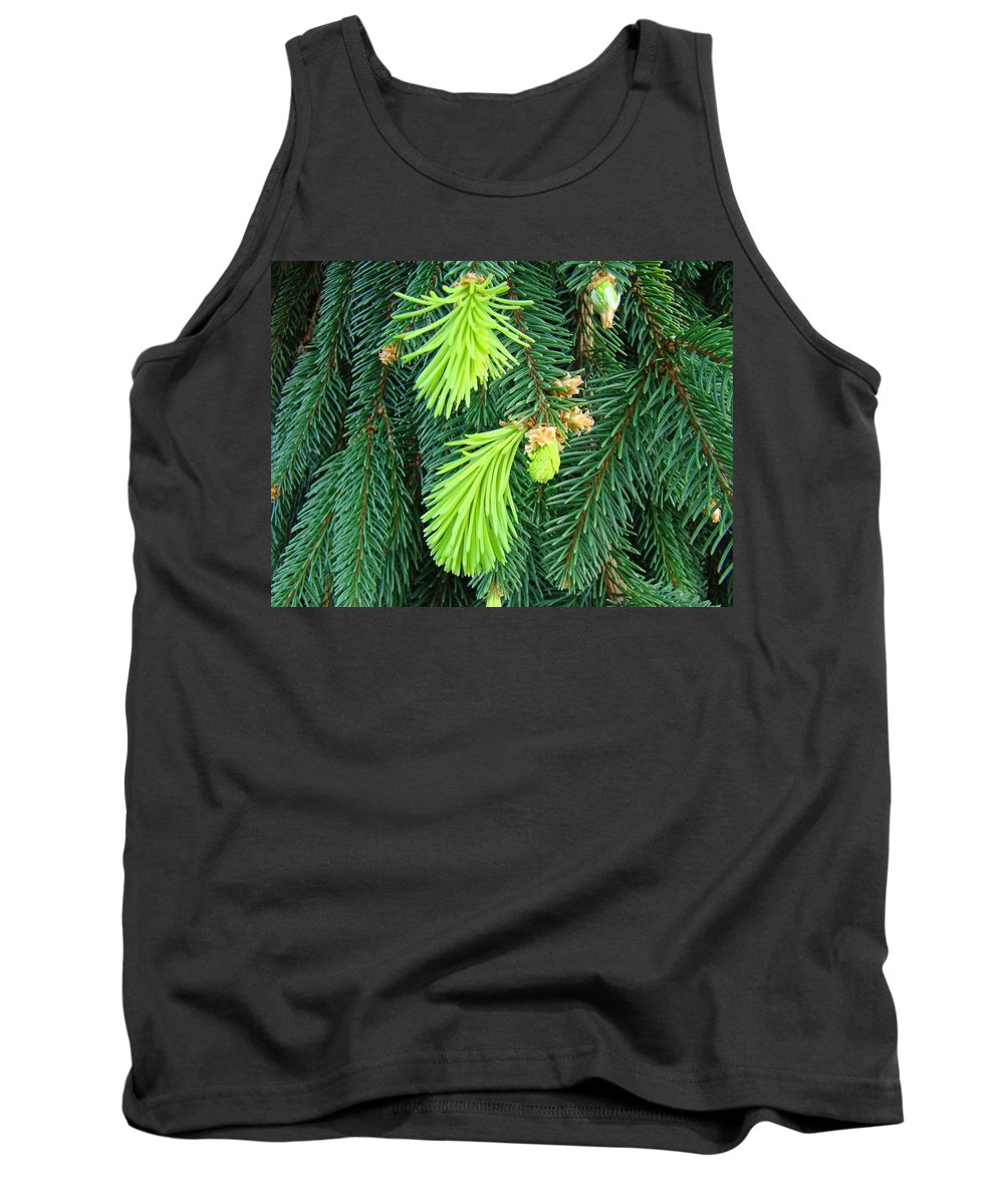 Pine Tank Top featuring the photograph Pine Tree Branches Art Prints Conifer Forest Baslee Troutman by Baslee Troutman