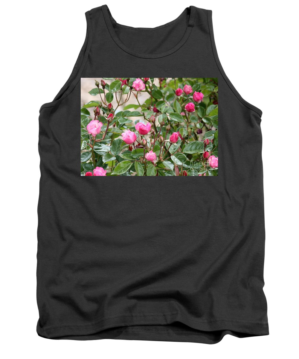Pink Roses Tank Top featuring the photograph Pink Rose Buds by Carol Groenen