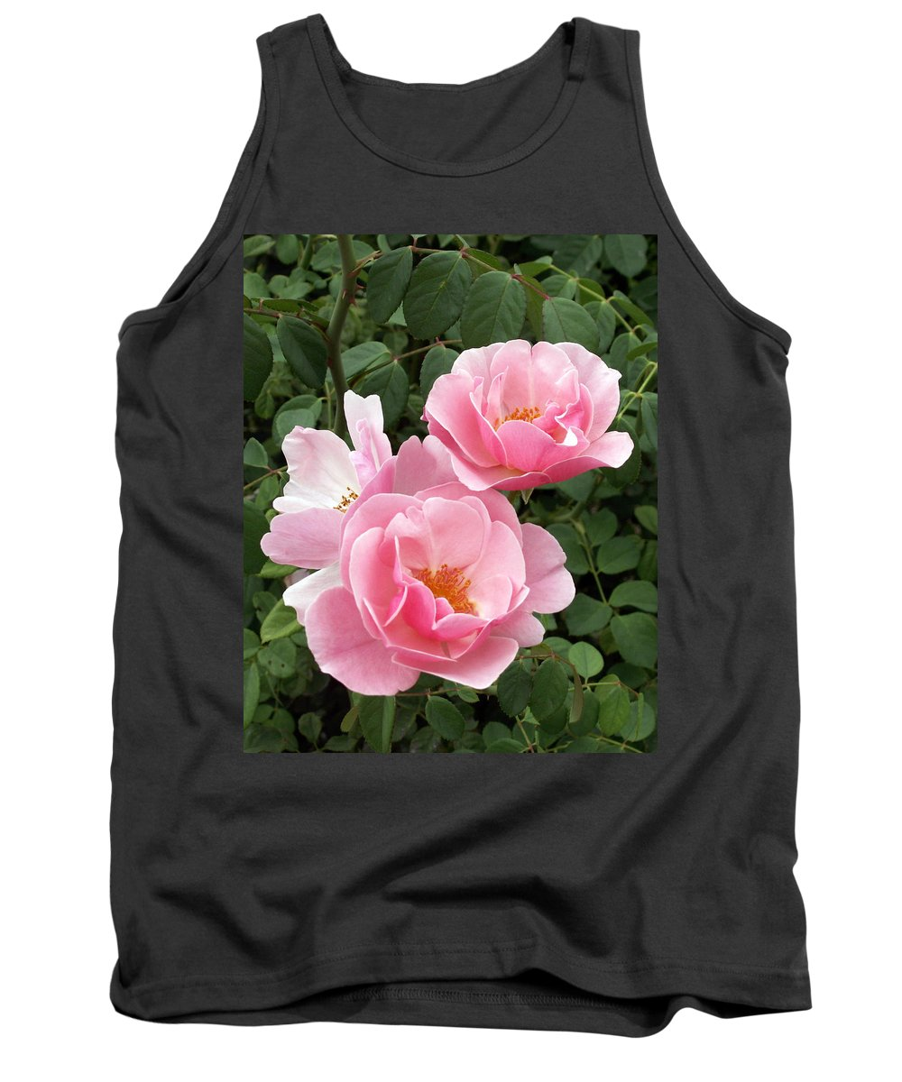 Roses Tank Top featuring the photograph Pink Roses 1 by Amy Fose
