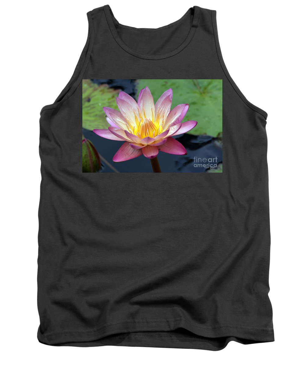 Wildflower Tank Top featuring the photograph Pink Water Lily by Teresa Zieba