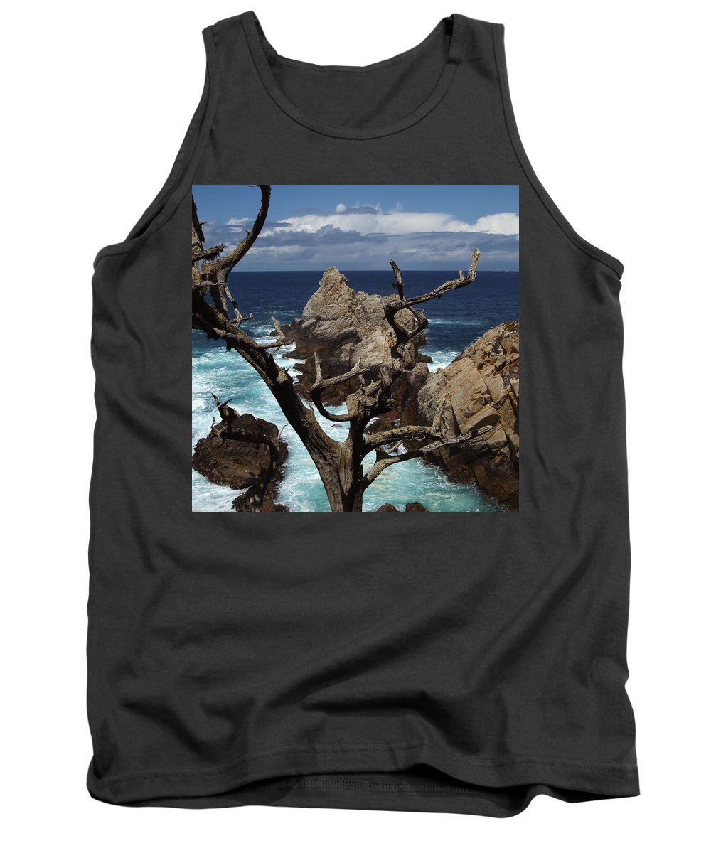 Carmel Tank Top featuring the photograph Point Lobos Rocks and Branches by Charlene Mitchell