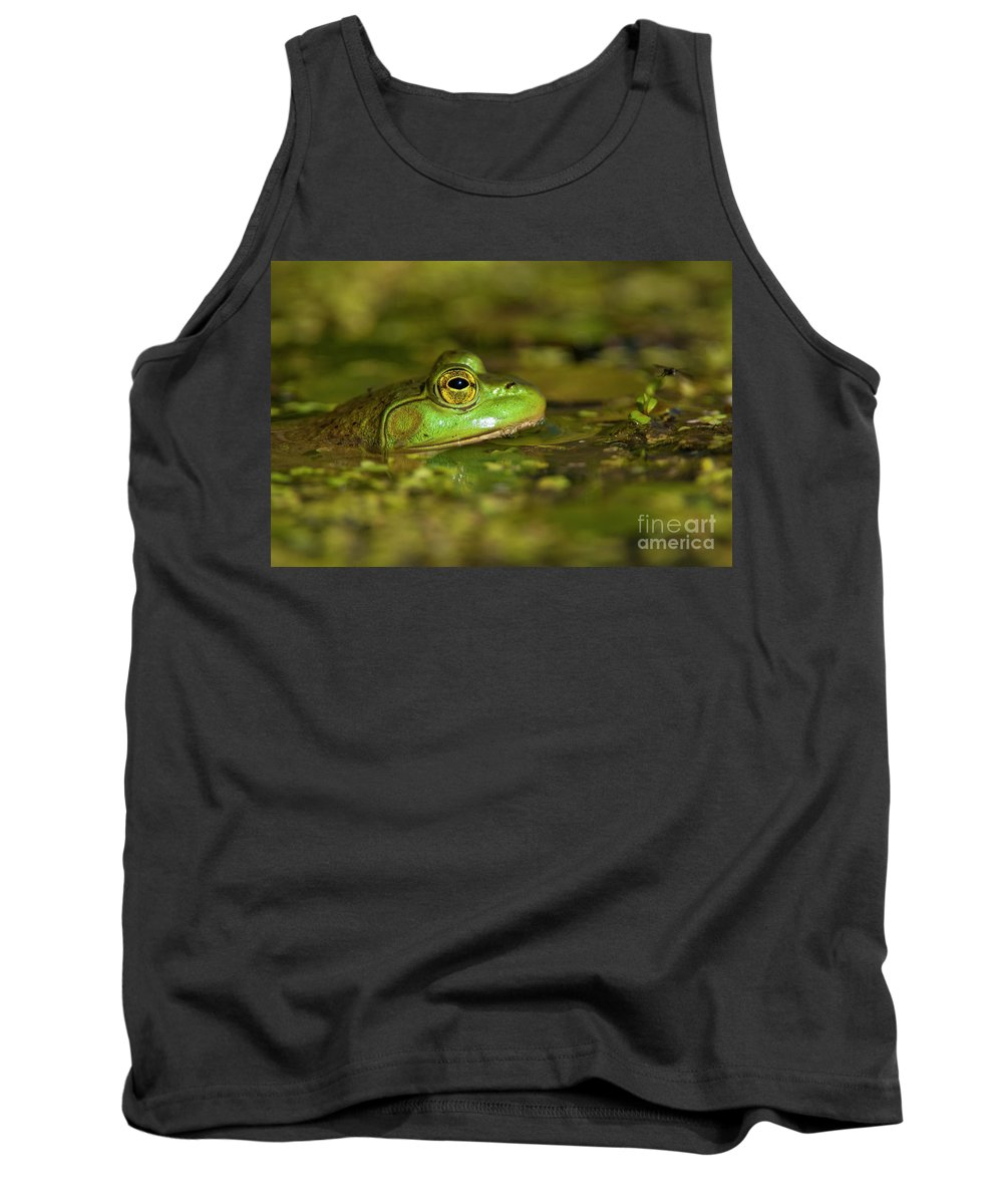 Frog Tank Top featuring the photograph Pond Frog 3 by Michael Cummings
