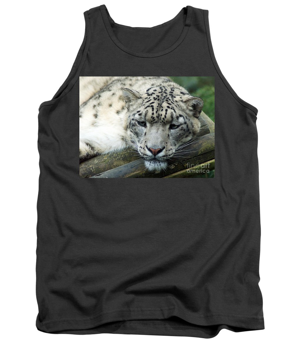Leopard Tank Top featuring the photograph Portrait Of A Snow Leopard by Toula Mavridou-Messer