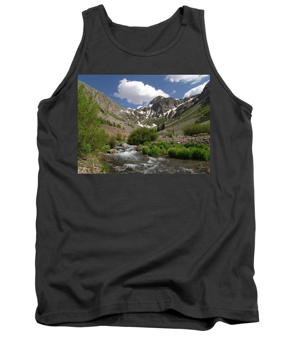 Trees Tank Top featuring the photograph Pure Mountain Beauty by Carol Milisen