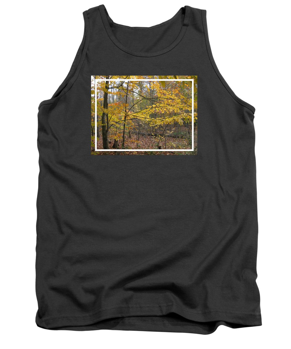 Soft Tank Top featuring the photograph Quiet Autumn Morning by Carolyn Jacob