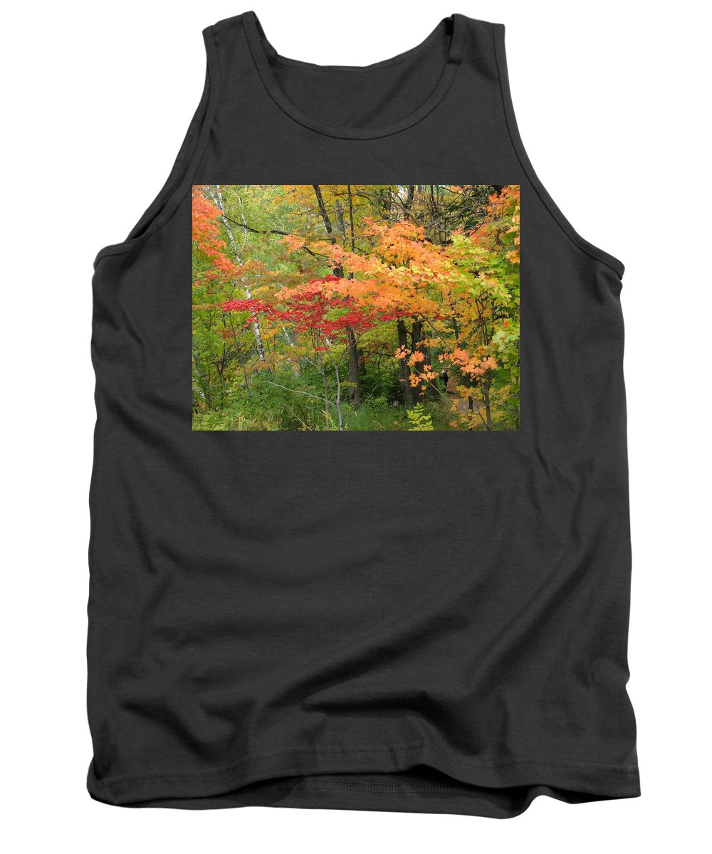 Fall Tank Top featuring the photograph Rainbow by Kelly Mezzapelle