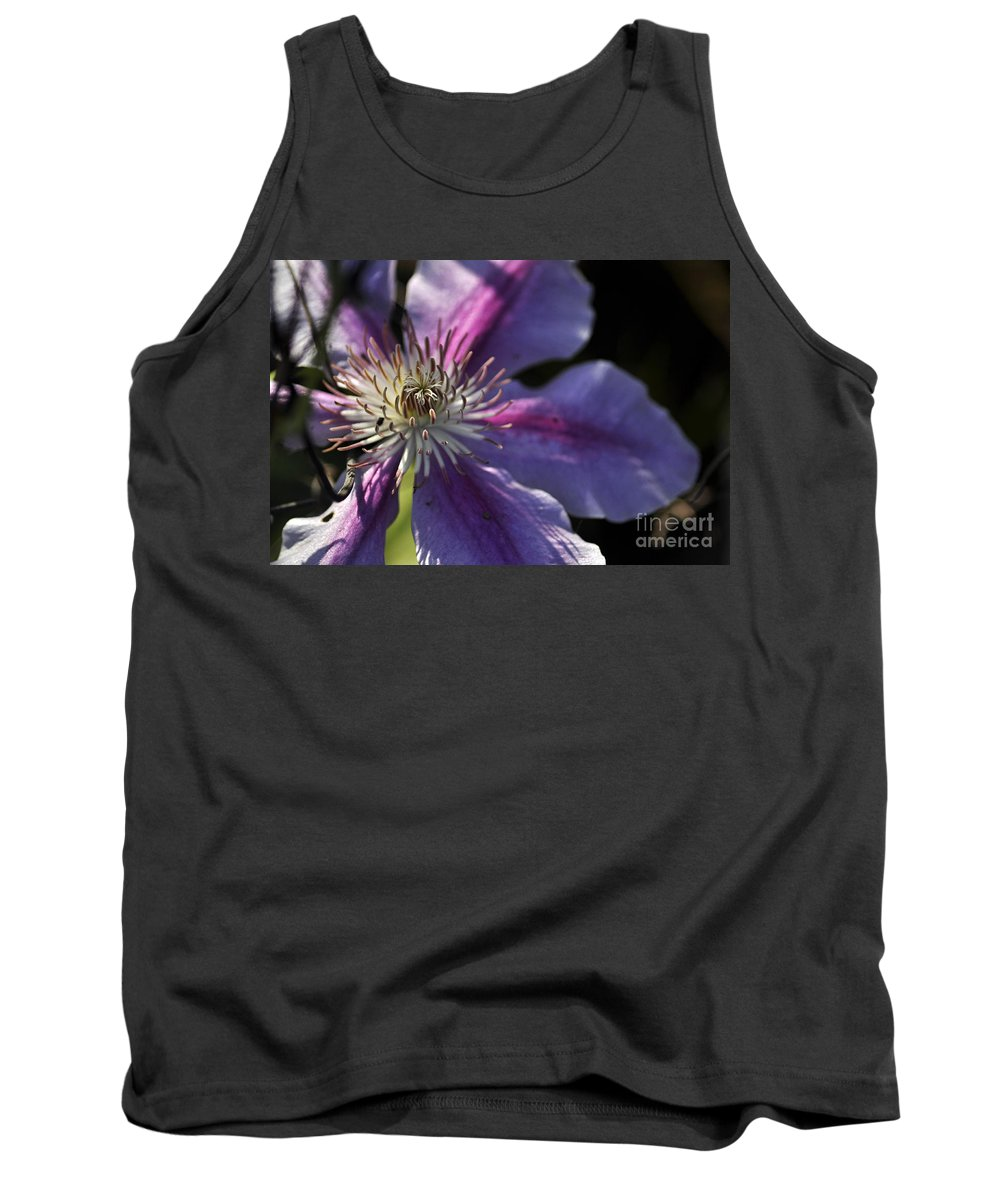 Clay Tank Top featuring the photograph Reach For The Sun by Clayton Bruster