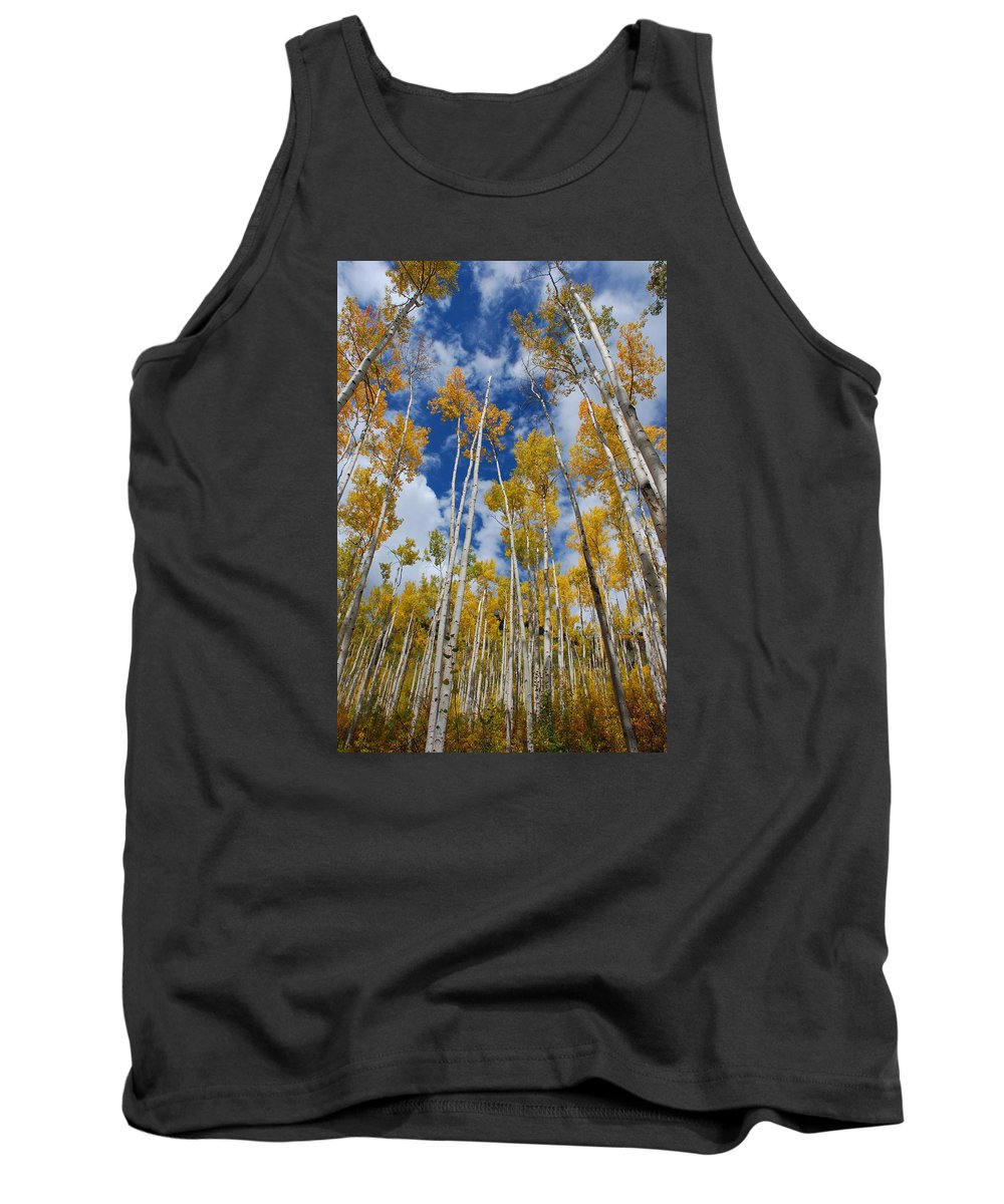 Aspen Tank Top featuring the photograph Reaching For The Sky by Jake Moore