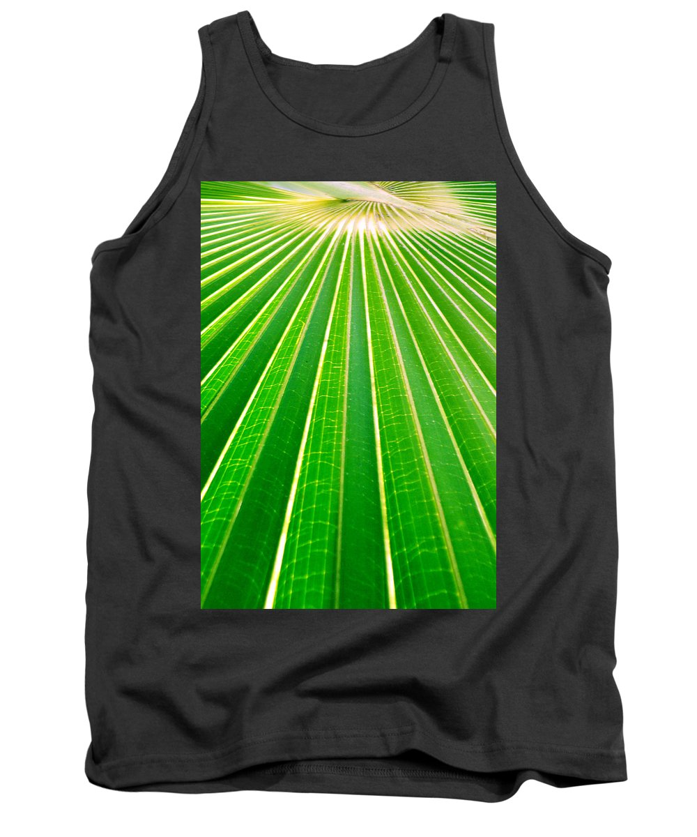 Nature Tank Top featuring the photograph Reaching Out by Holly Kempe