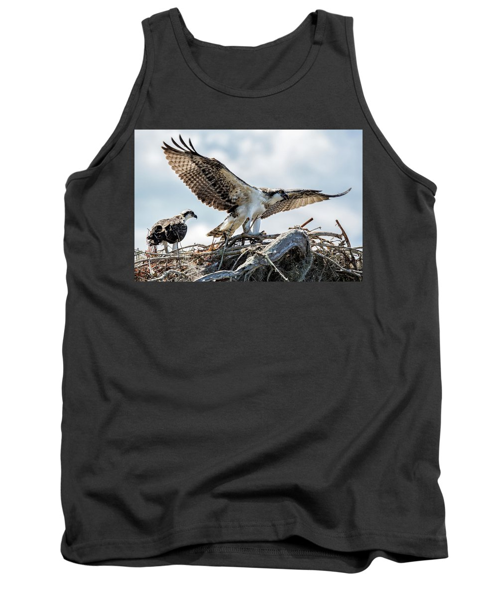Bird Tank Top featuring the photograph Ready For Flight by Susan Pantuso
